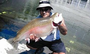 28-Pound Rainbow Trout Won't Break Idaho State Record