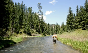 Access Denied: New Mexico Gives Public-Water Wading Fisherman the Boot