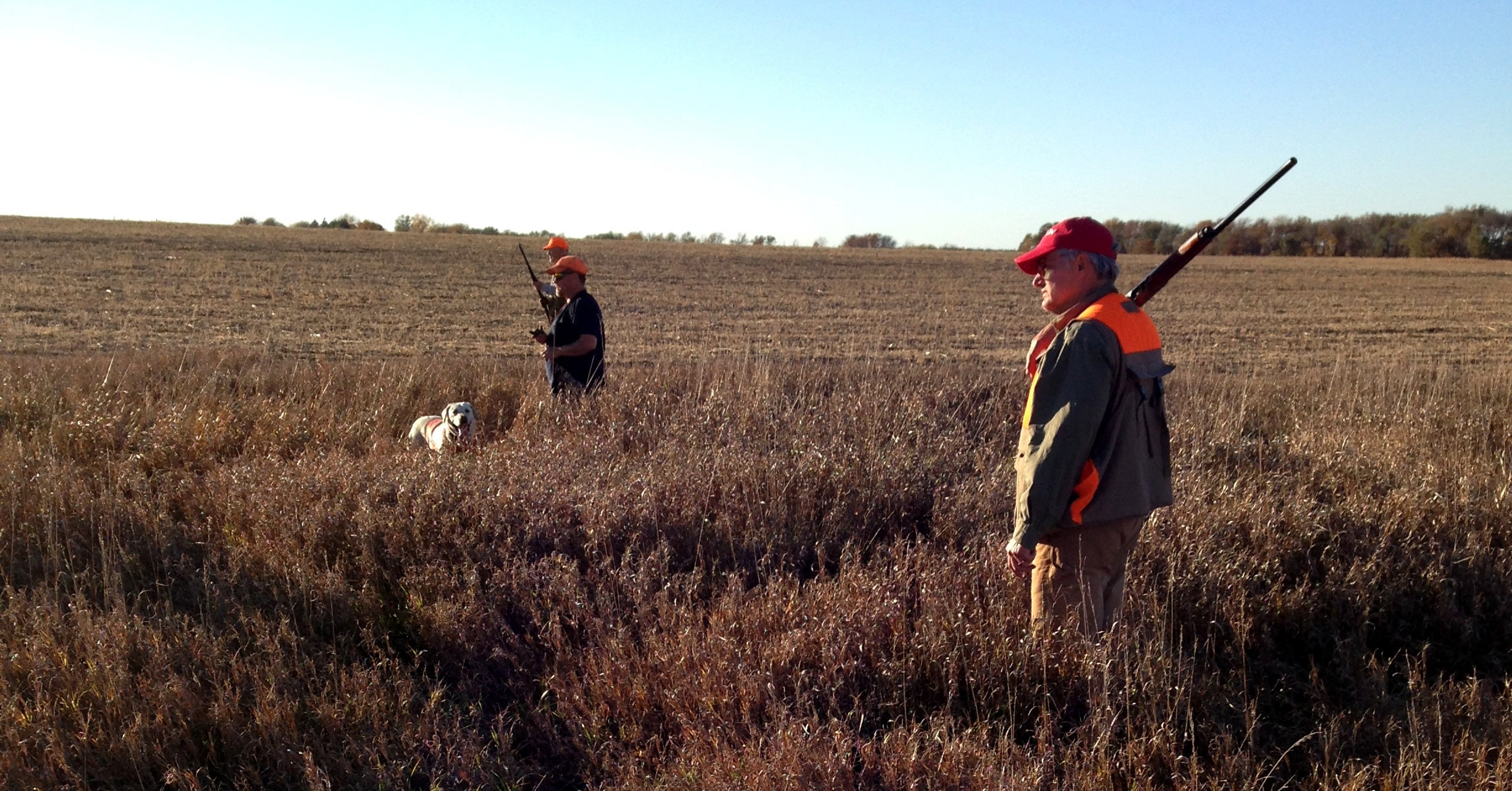 Upland Birds: Pay Attention to Your Dog for Better Wingshooting Opportunities