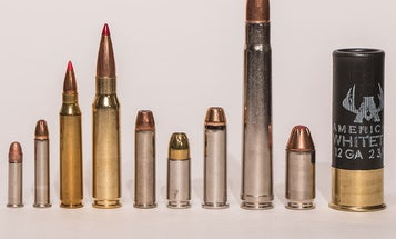 The Top 10 Essential Cartridges for the American Shooter
