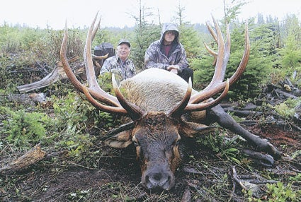 World Record Elk from SCI