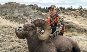Hunting a Record Bighorn in Broken Country