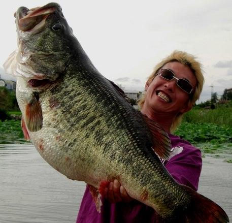 World Record Bass?