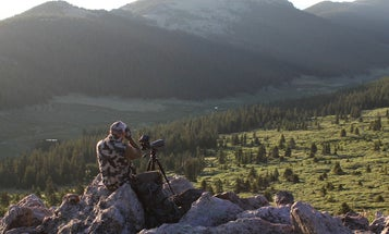 Scouting Tips: How To Find Elk in a New Hunting Area