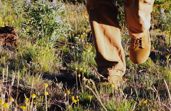 httpswww.outdoorlife.comsitesoutdoorlife.comfilesimport2014importBlogPostembedvt4.jpg