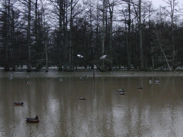 httpswww.outdoorlife.comsitesoutdoorlife.comfilesimport2014importImage2010photo30010BD7.jpg