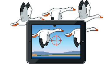 Digital Migration: How to Find Snow Geese This Spring