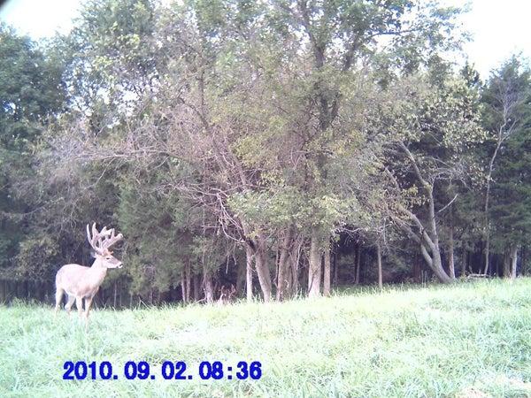 httpswww.outdoorlife.comsitesoutdoorlife.comfilesimport2013images20100910_20.jpg