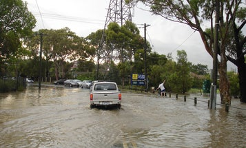 Survival Skills: How to Live Through a Flood