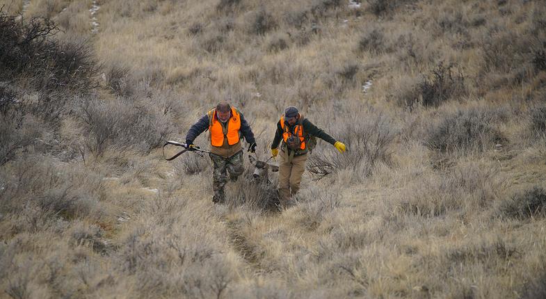 public land hunting