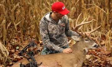 Deer Hunting: 4 Lessons Learned After Switching to Mature Bucks