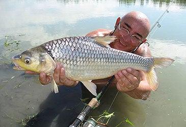 httpswww.outdoorlife.comsitesoutdoorlife.comfilesimport2014importImage2010photo6soldier_river_barb_record.jpg