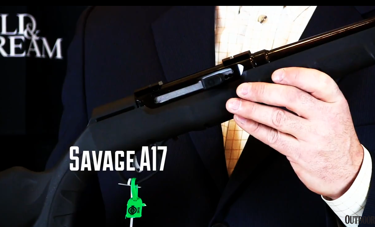New Semi-Automatic Rifle: Savage A17