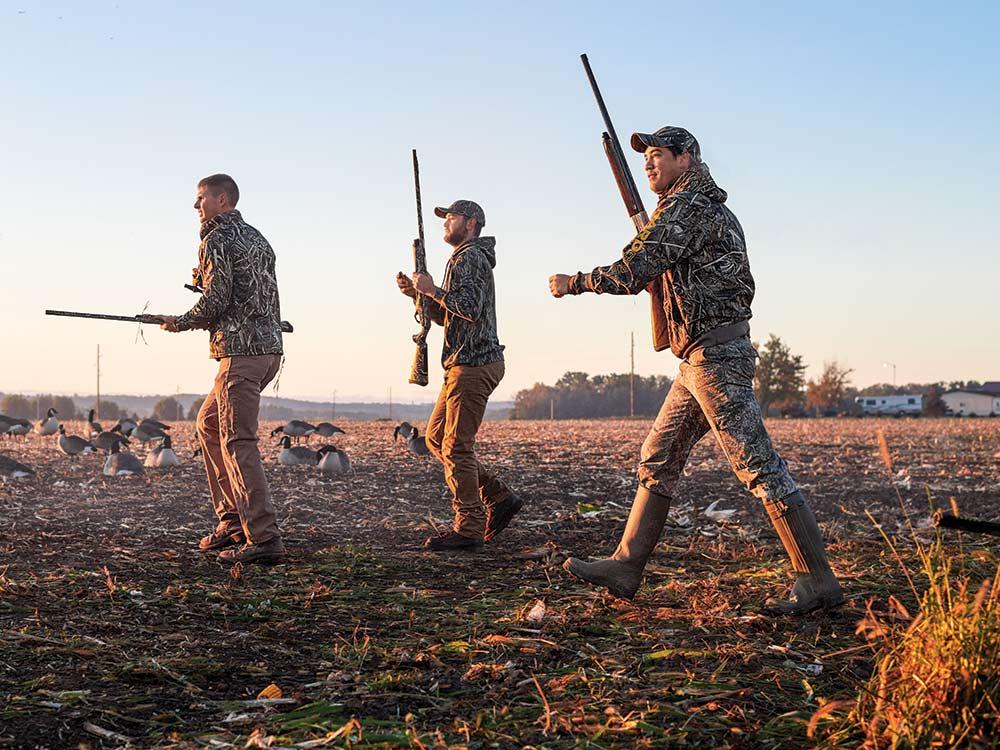 geese hunters in field