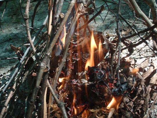 How to Start a Fire: 10 Tips For Building a Sure-Thing Fire