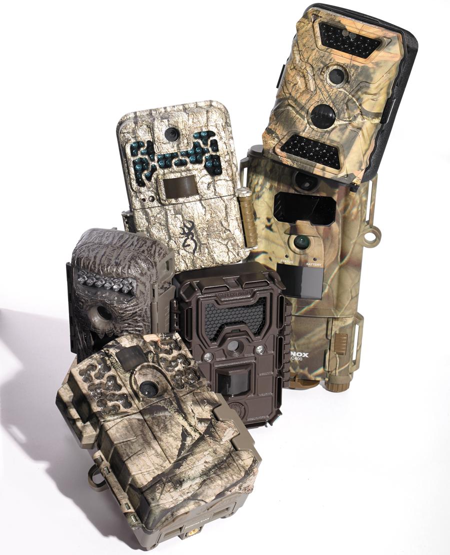 Gear Test: 6 Budget Trail Cameras