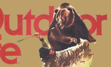 28 Vintage Outdoor Life Bear Covers From 1972 to 1988