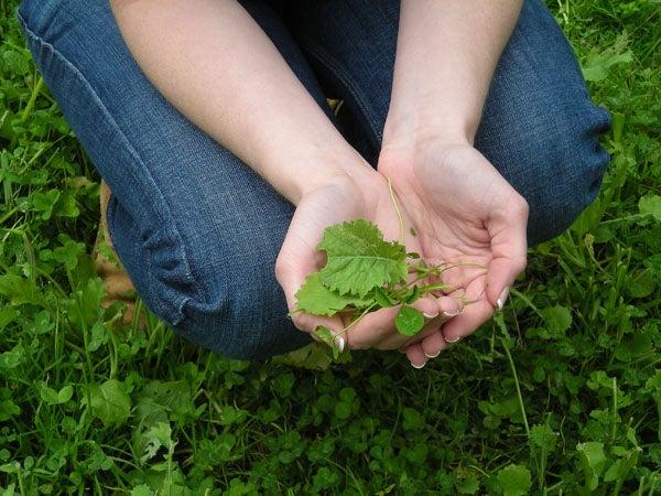 httpswww.outdoorlife.comsitesoutdoorlife.comfilesimport2014importImage2009photo7DSCN0530.JPG