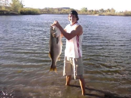 Teen Could Break CO State Record With 31-Pound Striped Bass