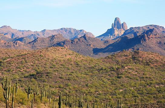 Public Land: Hunting and Fishing in Arizona
