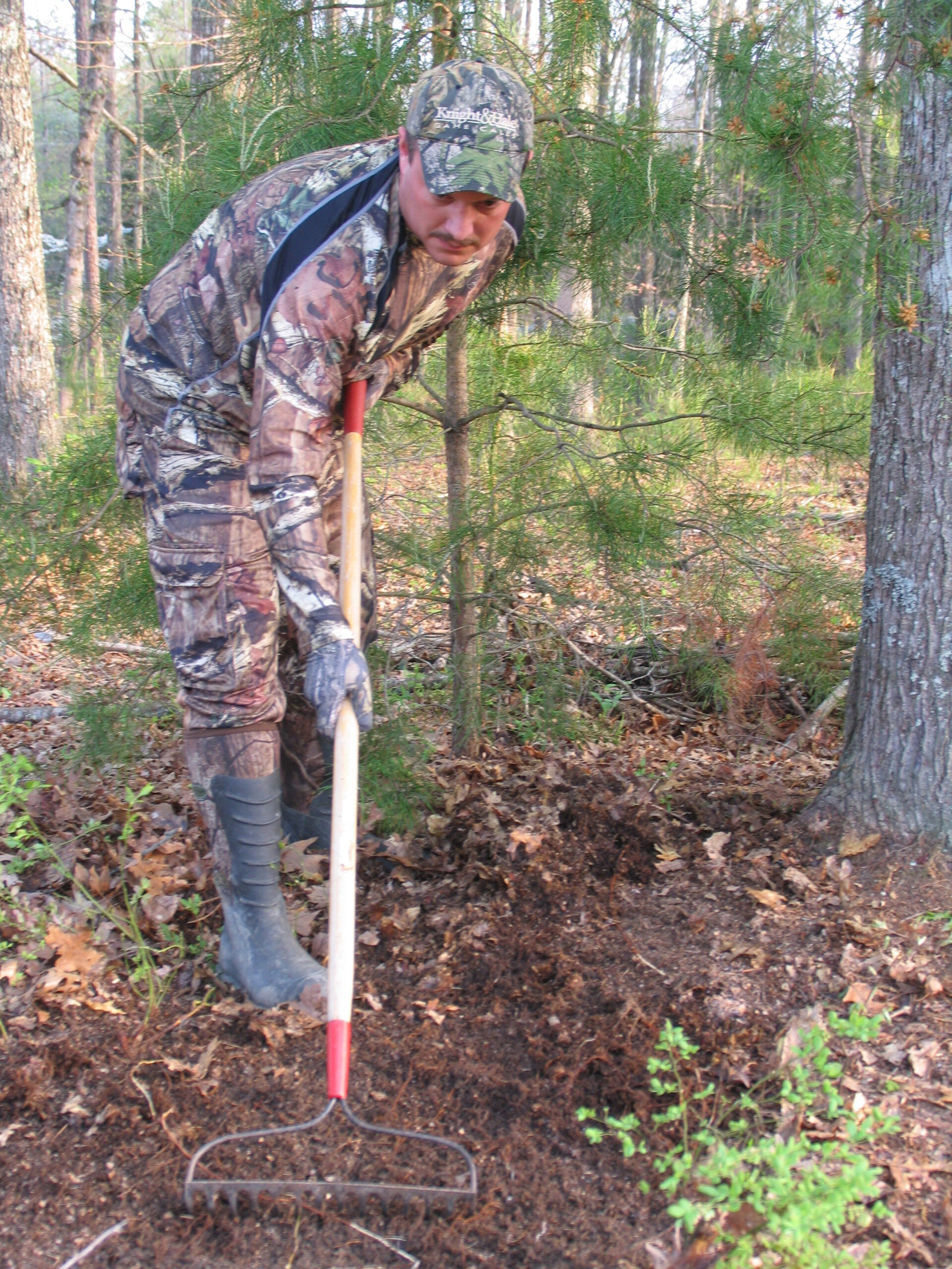 Start Your Deer Season Now