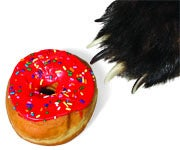 Creative Recipes for Baiting Black Bears
