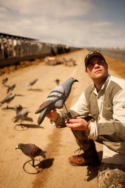 httpswww.outdoorlife.comsitesoutdoorlife.comfilesimport2013images201202pigeonshooting_08.jpg
