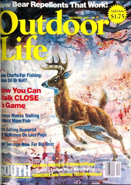 httpswww.outdoorlife.comsitesoutdoorlife.comfilesimport2013images2011071985_Dec_0.jpg