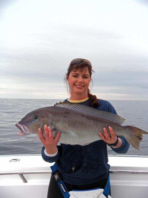 httpswww.outdoorlife.comsitesoutdoorlife.comfilesimport2014importImage2009photo3Dr.JulieBallwithbigblulinetilefish_0.jpg