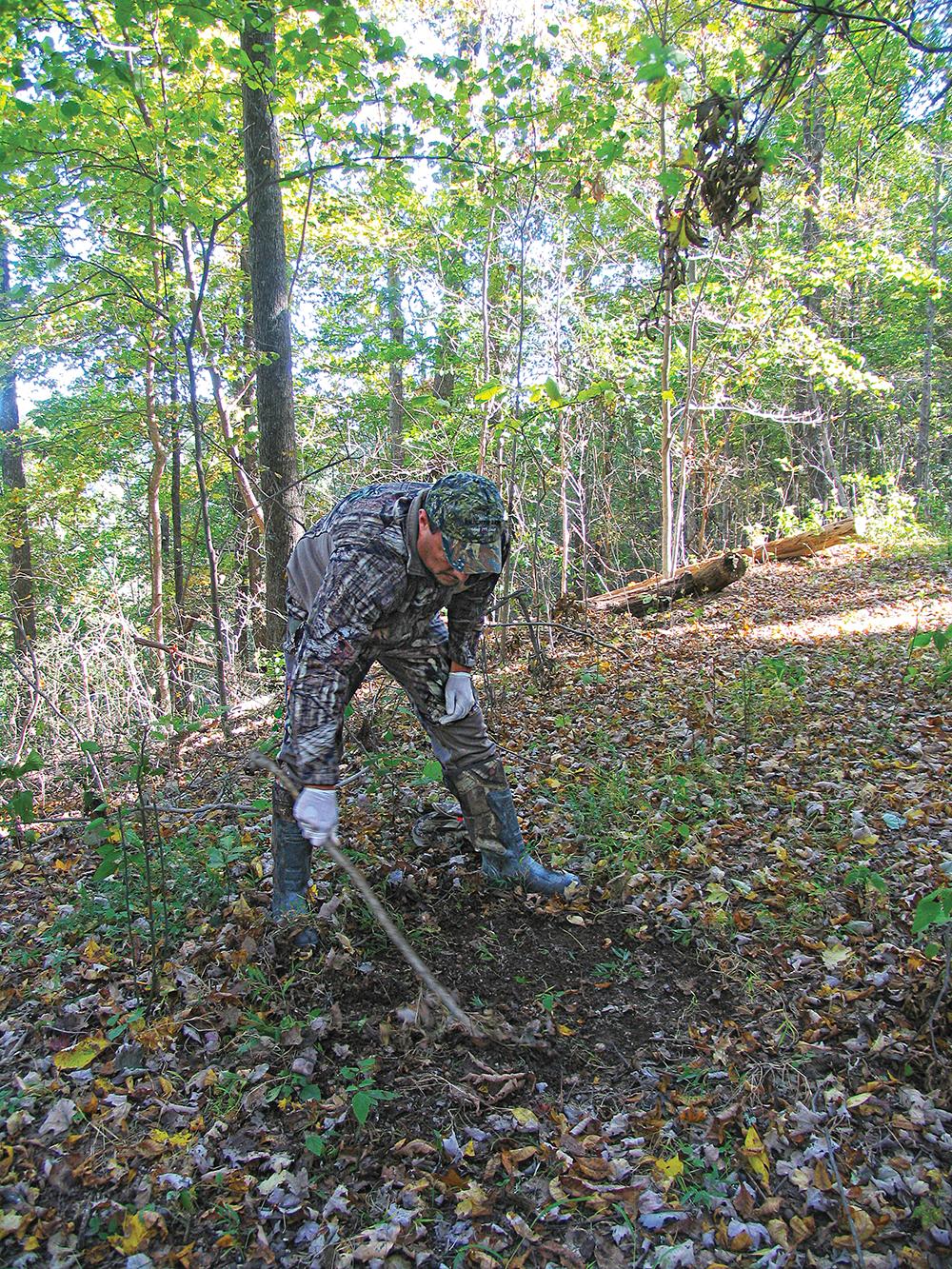 deer hunting scents