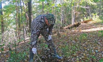 Deer Scents: They're Not Just For The Rut