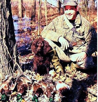 httpswww.outdoorlife.comsitesoutdoorlife.comfilesimport2014importImage2008legacyoutdoorlifedog_Boykin_Spaniel.jpg