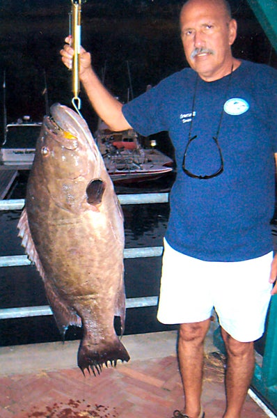 httpswww.outdoorlife.comsitesoutdoorlife.comfilesimport2014importImage2010photo10013215794_broomtail_grouper_-_35896.jpg