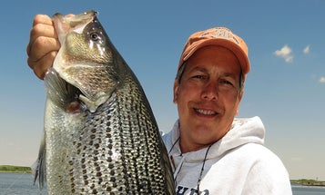 Wipers: Catching Hybrid Striped Bass