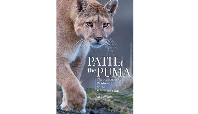 path of the puma