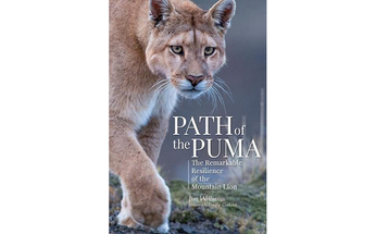 Book Review: Path of the Puma