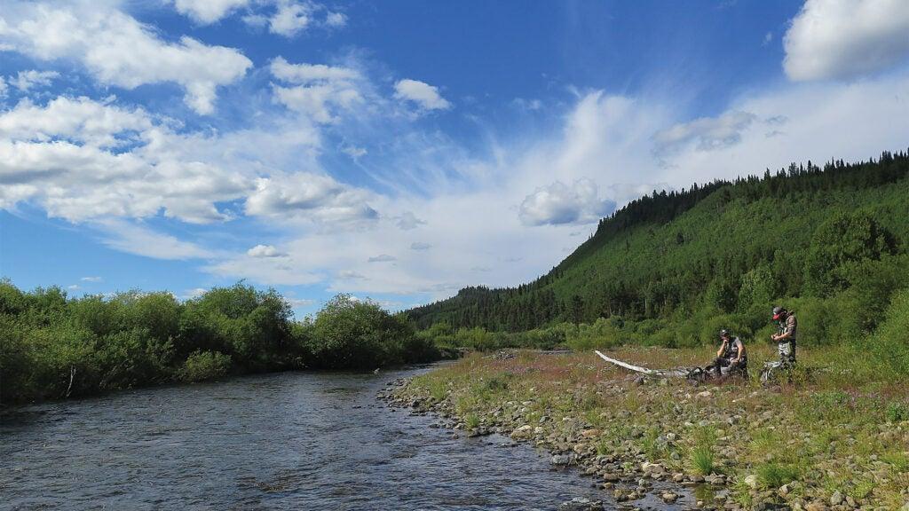Alaskan Salmon researchers