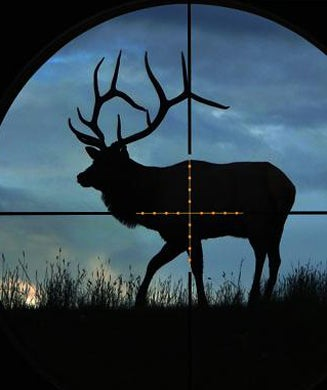 Illuminated Reticles Are Useless on Big-Game Riflescopes
