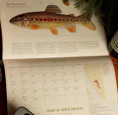 httpswww.outdoorlife.comsitesoutdoorlife.comfilesimport2014importImage2008legacyoutdoorlife125-holiday08_trout_north_america_calendar.jpg