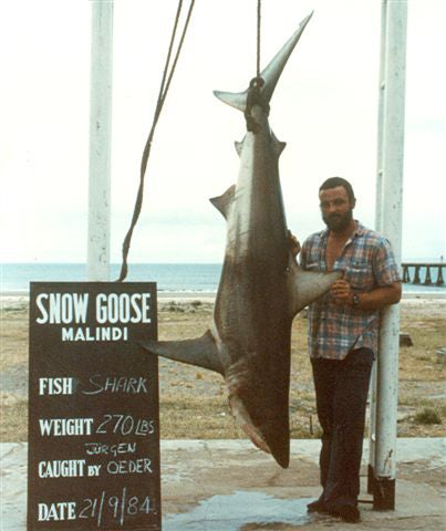 httpswww.outdoorlife.comsitesoutdoorlife.comfilesimport2014importImage2009photo3Shark_blacktip_07860007.jpg