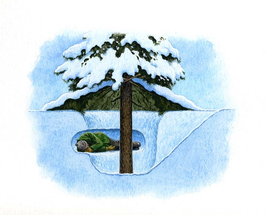httpswww.outdoorlife.comsitesoutdoorlife.comfilesimport2014importImage2011photo1001316073GimeeShelter_tree.jpg