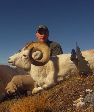 Live Hunt AK: DIY Dall Sheep Hunting in Alaska's Brooks Range