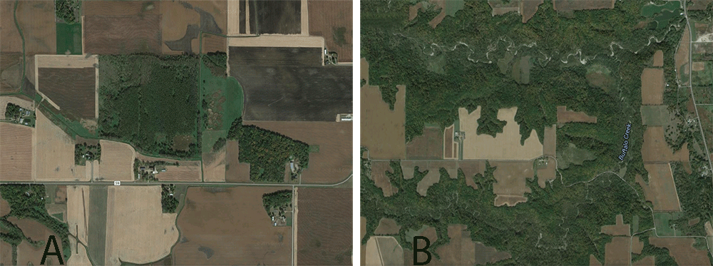 Two side-by-side satellite photos of Midwestern timber and ag fields to compare cover and food sources.