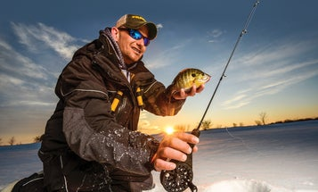 Using Palm Reels for Panfish