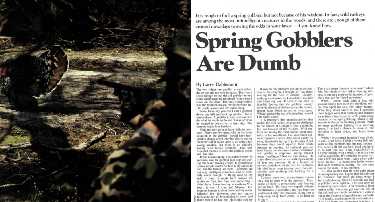 Outdoor Life Archives: Spring Gobblers are Dumb, February 1983
