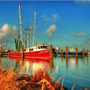 Venice Louisiana
