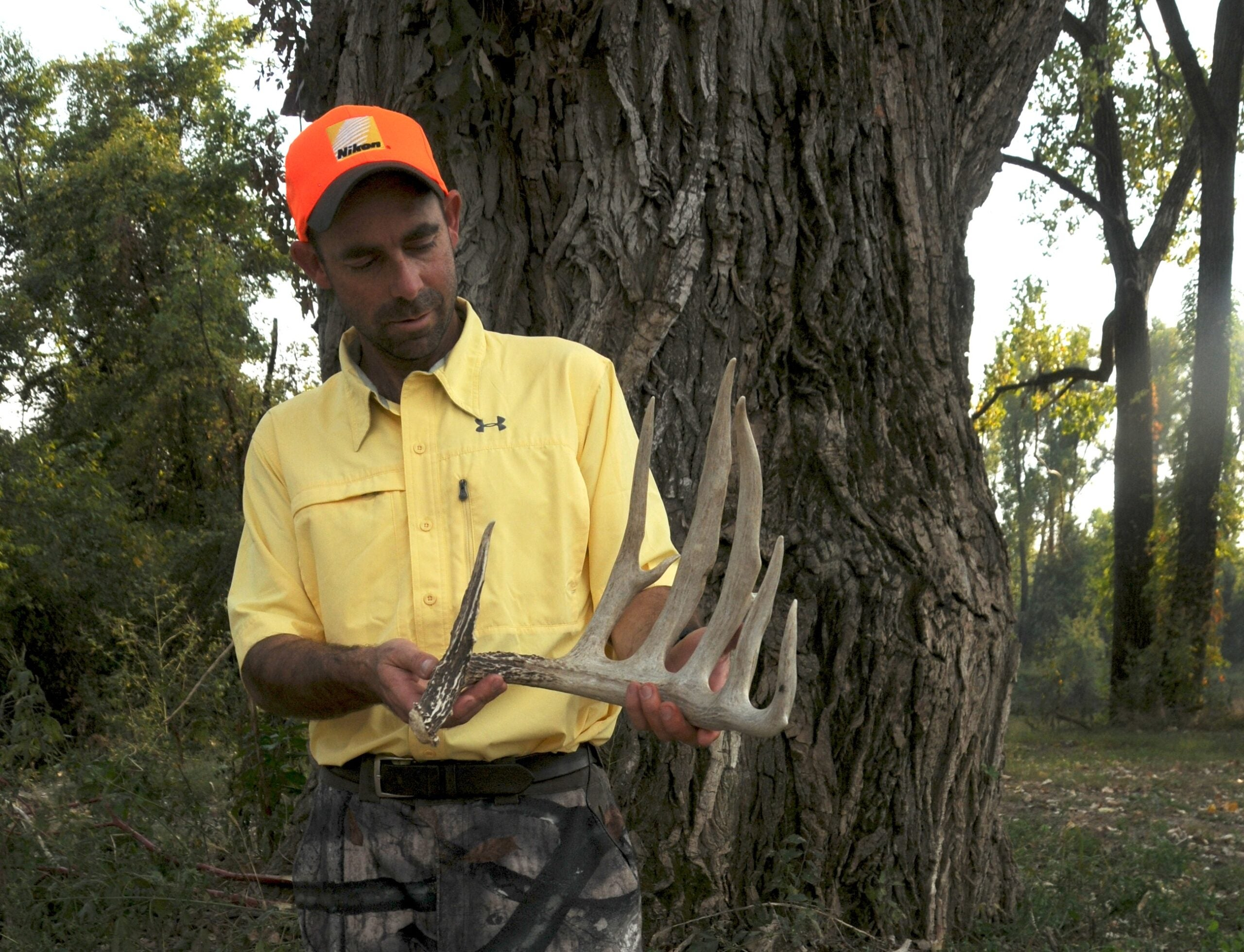 World Record Whitetail?