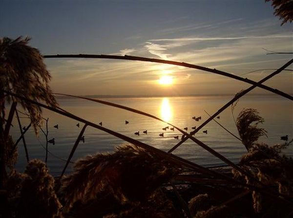 httpswww.outdoorlife.comsitesoutdoorlife.comfilesimport2013images20110112_21.jpg