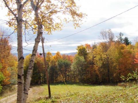 httpswww.outdoorlife.comsitesoutdoorlife.comfilesimport2014importImage2009photo7Decfoliage_63.jpeg