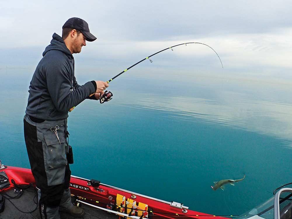 fishing lake michigan giant trout